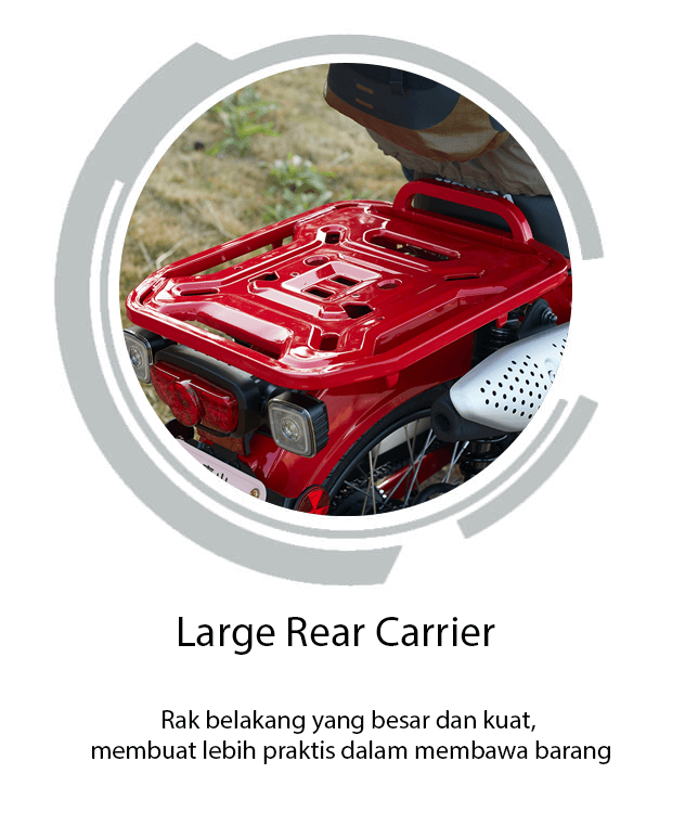 Large Rear Carrier